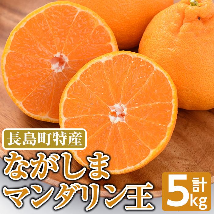 【ふるさと納税】ながしまマンダリン王(大将季)5Kg_mandarin-402