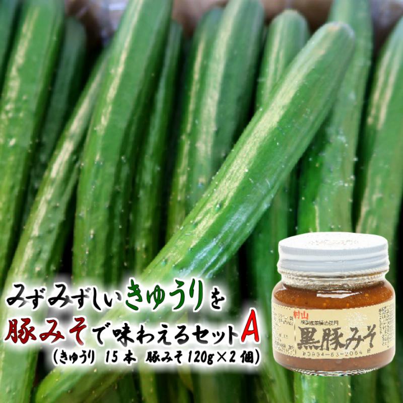 【ふるさと納税】【07600】みずみずしいきゅうりを豚味噌で味わえるセット A