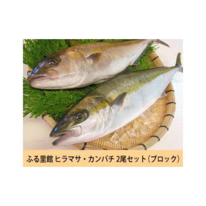 【ふるさと納税】No.3006 ふる里館 カンパチ・ヒラマサ2尾セット(ブロック)(3.5k~4k)