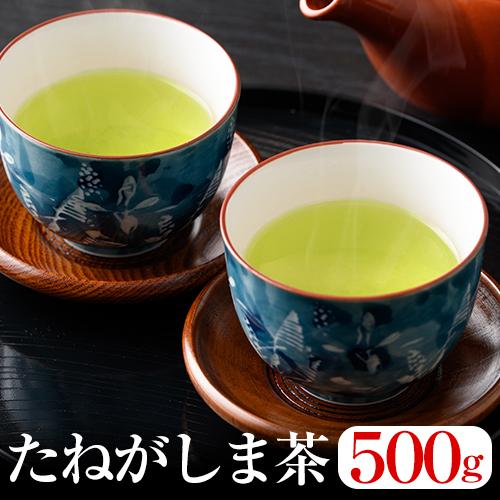 【ふるさと納税】たねがしま茶(500g)【鮫島茶場】