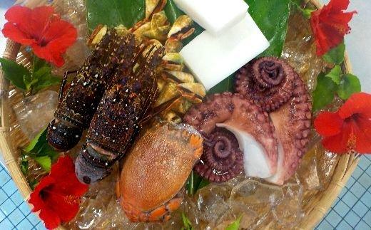 【ふるさと納税】AO-1 奄美大島瀬戸内町産魚貝5種詰め合わせセット