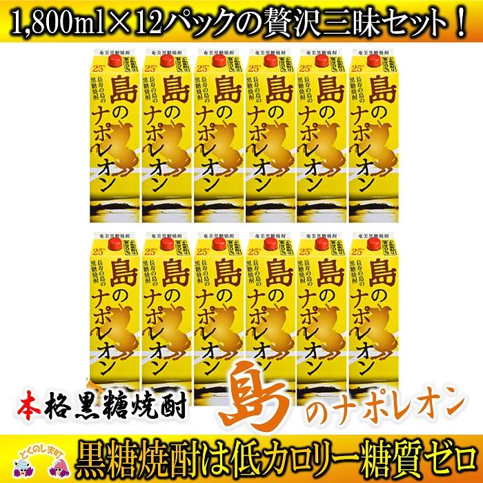 【ふるさと納税】奄美本格黒糖焼酎 島のナポレオン1,800mlパック 12本セット