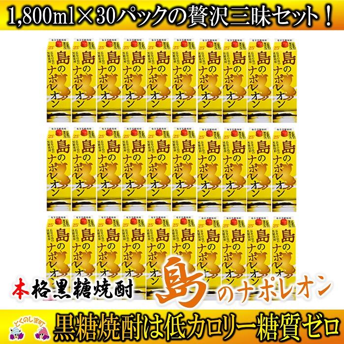 【ふるさと納税】奄美本格黒糖焼酎 島のナポレオン1,800mlパック 30本セット