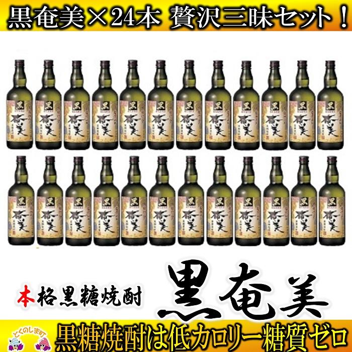 【ふるさと納税】奄美黒糖焼酎 黒奄美24本セット