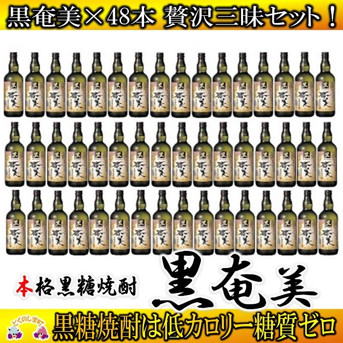 【ふるさと納税】奄美黒糖焼酎 黒奄美48本セット