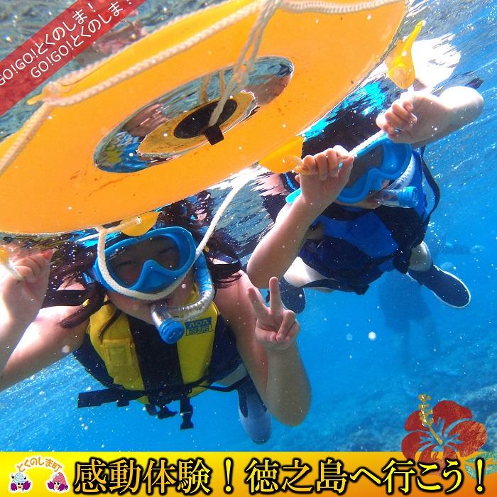 【ふるさと納税】~さぁ徳之島の海へ旅しよう~スノーケリング体験(半日)