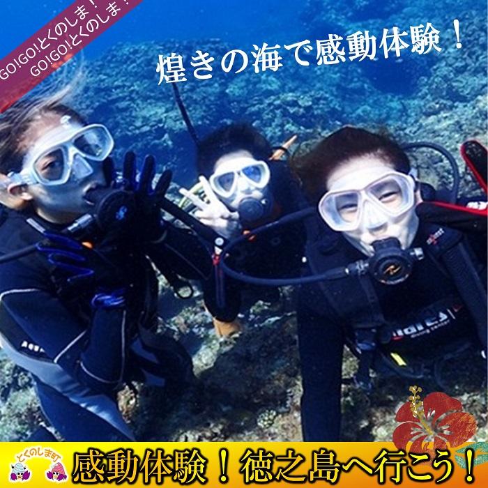 【ふるさと納税】~さぁ徳之島の海へ旅しよう~ダイビング体験(半日)