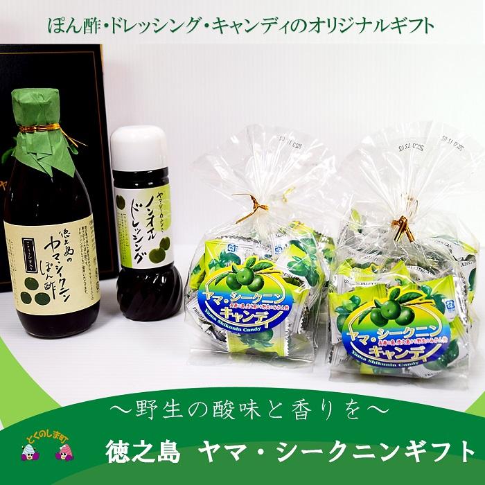 【ふるさと納税】~野生の酸味と香りがクセになる!~徳之島のヤマシークニンギフト