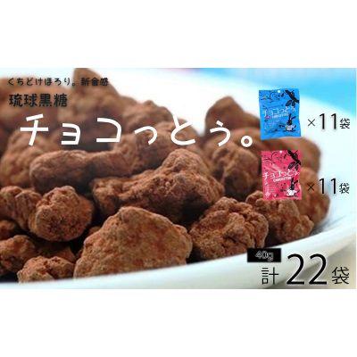 ふるさと納税 黒糖菓子の新食感 新登場 チョコっとぅ 評判 シリーズセット 40g×22袋