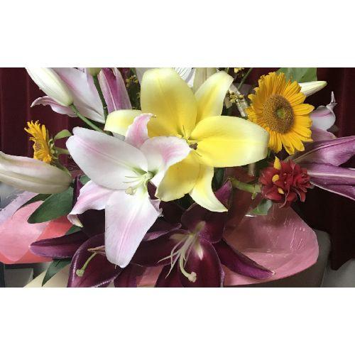 【ふるさと納税】農家から発送します!「カサブランカ」芳しい香りと気高い花姿