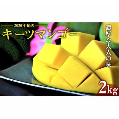 【ふるさと納税】【2020年発送】濃厚な大人の味 沖縄県「キーツマンゴー」2kg