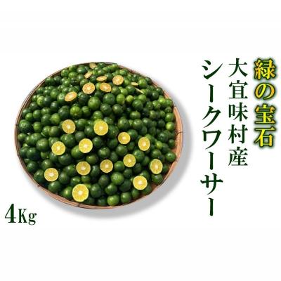【ふるさと納税】青切りシークワーサー《4Kg》【大宜味村 緑の宝石】