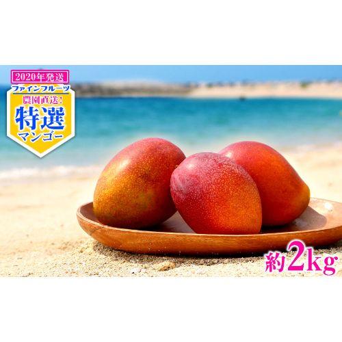 【ふるさと納税】【2020年発送】農園直送!ファインフルーツおおぎみ特選マンゴー約2kg