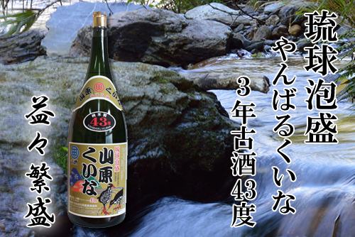 【ふるさと納税】3年古酒『やんばるくいな』益々繁盛(升々半升)