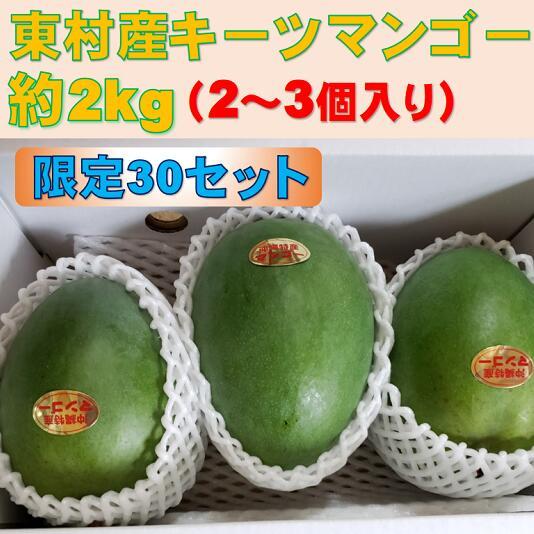 【ふるさと納税】農家直送! 眞ちゃん自慢のキーツマンゴー約2kg(2~3玉)