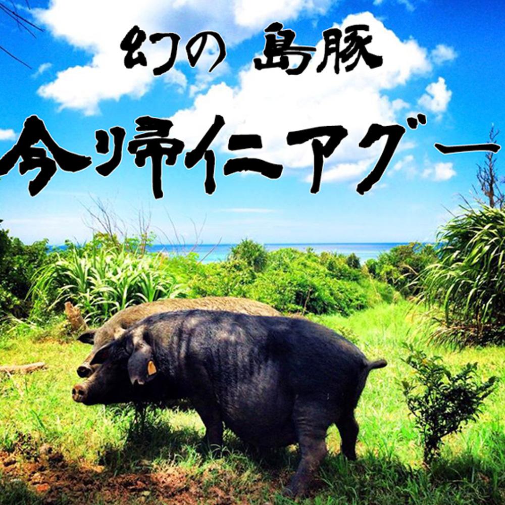 【ふるさと納税】長堂屋の今帰仁アグーギフトセット
