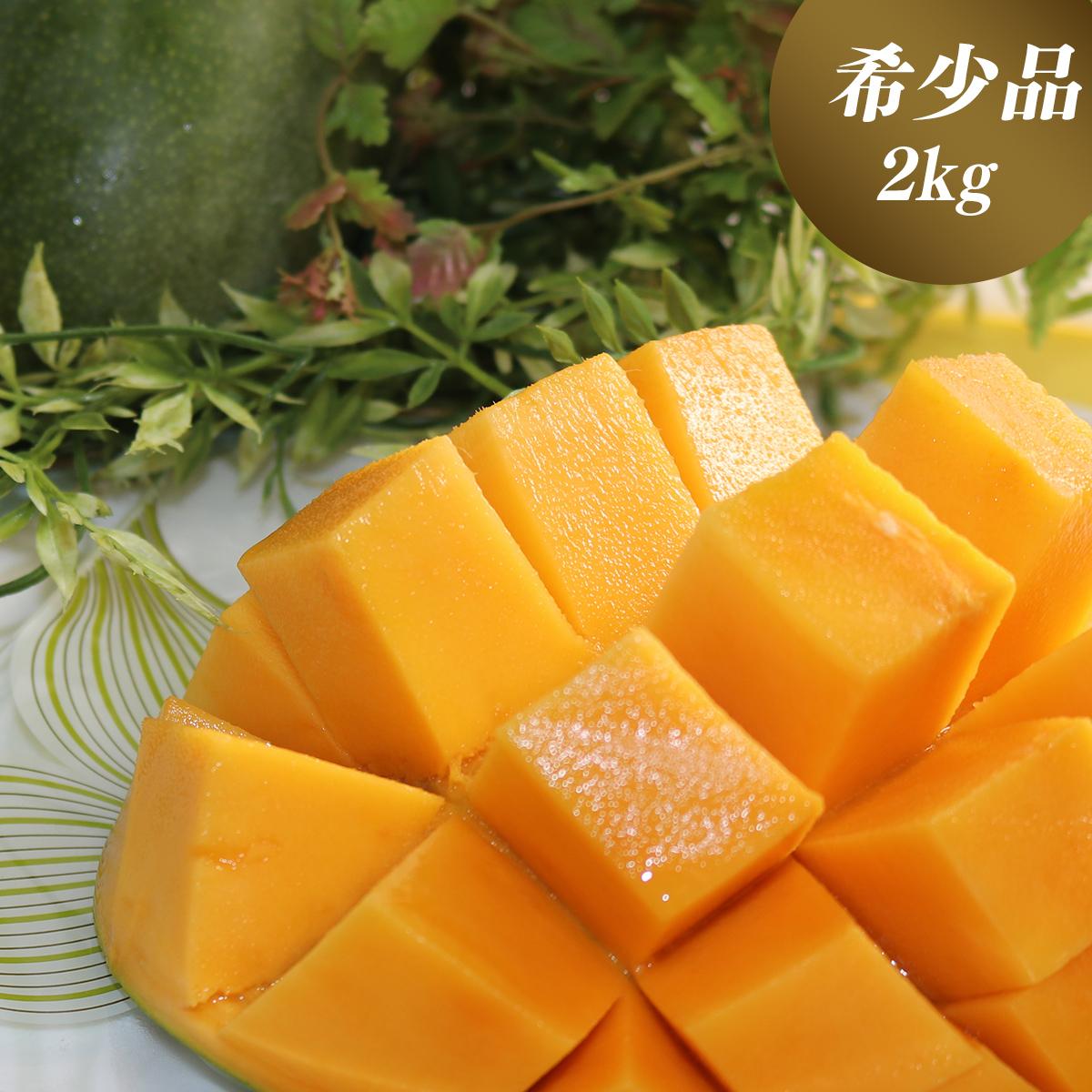 【ふるさと納税】【先行予約】【2020年8月下旬~9月頃発送】緑のマンゴーキーツ(2kg)