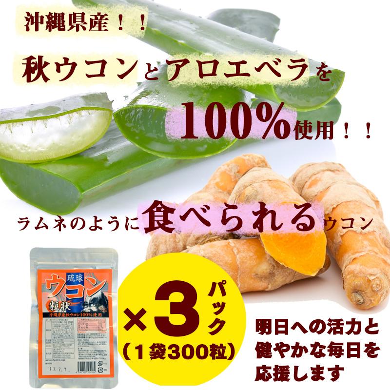 【ふるさと納税】琉球ウコン粒状 300粒×3パック