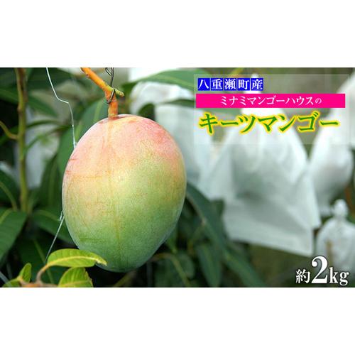 【ふるさと納税】 【2020年発送】ミナミマンゴーハウスのキーツマンゴー約2kg