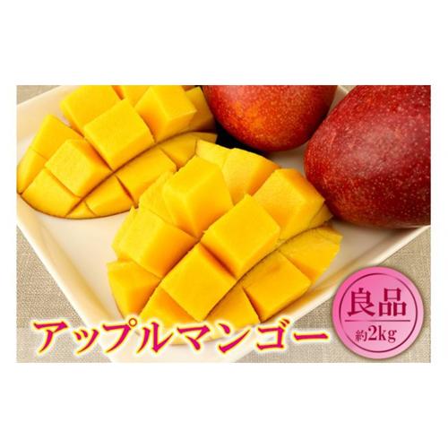 【ふるさと納税】【2020年発送】くがに市場の産直アップルマンゴー約2kg【良品】