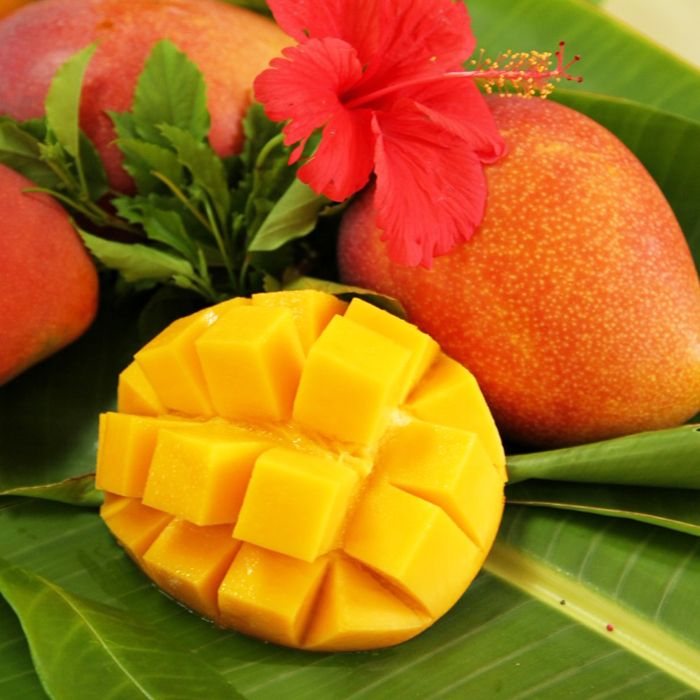 【ふるさと納税】アップルマンゴー 4kg マンゴー 完熟マンゴー 南国フルーツ