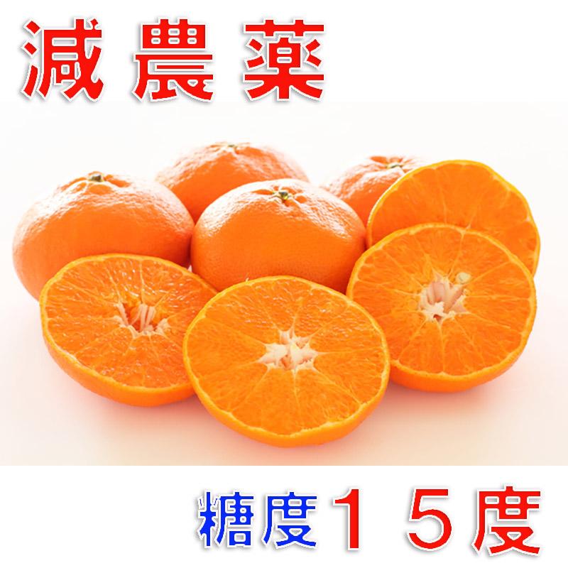 訳あり 減農薬 最高糖度15度 甘平 みかん 約5kg 愛媛産 サイズ混合 産地直送 ore 大三島