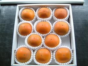糖度22度 返金保証 柿 和歌山 新秋柿 訳あり L 11玉 約2kg S10