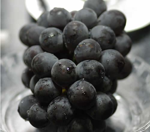 岡山産 ぶどう ピオーネ 大粒2房入 贈答用秀品 ブドウ 葡萄 S10