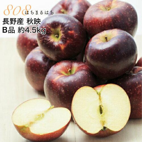 秋映 低農薬 AL完売しました 有機肥料栽培 リンゴ セールSALE%OFF を長野の農園から直送 送料無料 減農薬 長野 りんご 産地直送 約4.5kg B品 小山 SSS 12~25個入 10t 秋映え 林檎