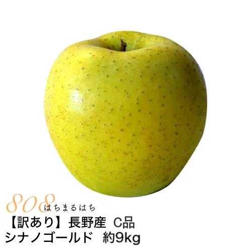 低農薬 有機肥料栽培 リンゴ を長野の農園から直送 送料無料 訳あり 減農薬 長野 定価の67%OFF シナノゴールド 産地直送 小山 再入荷 予約販売 11j 約9kg C品 16~50個入 林檎 SSS りんご