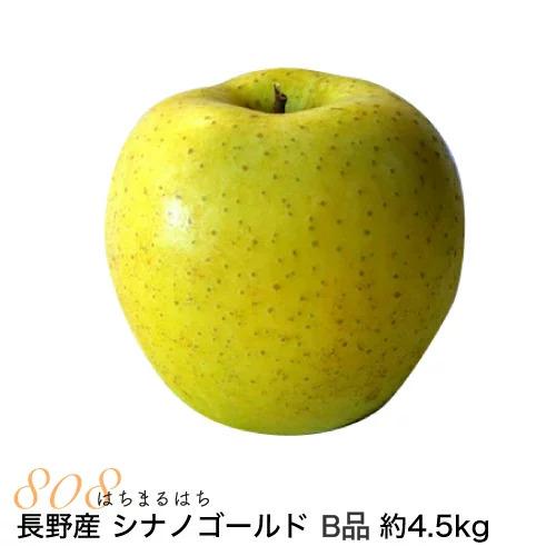 低農薬 有機肥料栽培 リンゴ を長野の農園から直送 送料無料 減農薬 長野 シナノゴールド りんご B品 小山 林檎 約4.5kg 業界No.1 8~25個入 激安挑戦中 11j 産地直送 SSS