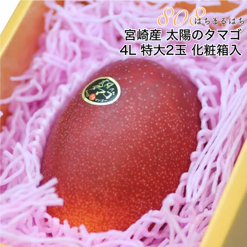 母の日 マンゴー 宮崎 太陽のタマゴ 4L 特大2玉 約1.2kg 化粧箱入 宮崎マンゴー 太陽のたまご ギフト