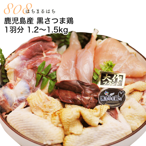 鹿児島産 黒さつま鶏 1羽分 1.2~1.5kg (もも むね ささみ 砂肝(砂ずり) 肝(レバー)) 地鶏 産地直送 かごしま地鶏 ギフト 【SSS】 12n