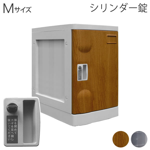 Mサイズロッカー シリンダー錠 プラボックス 受注生産 木目 クリア色 MYNR