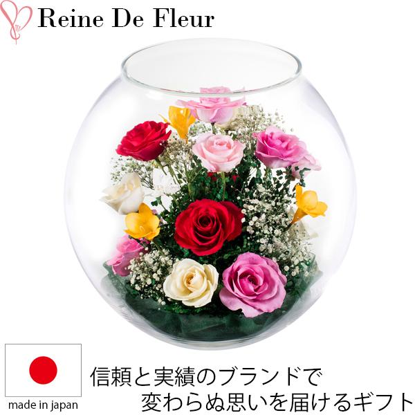 送料無料 ドライフラワー ボトルフラワー レンデフロール C-F 新築祝い 開業祝い 花ギフト 母の日 定年祝い