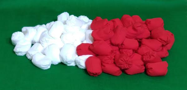 玉入れ 球 専門店 紅白玉 運動会 期間限定お試し価格 体育祭 玉入れ競争 赤白各50個計100個セット 運動会用品 収納袋付き 玉入れ玉 紅白セット