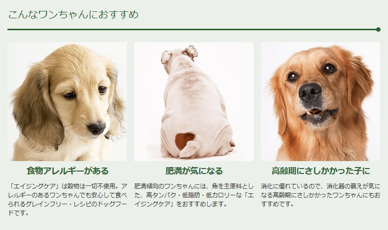 グローバルワン ネイチャーズテイスト NATURE'S TASTE フィッシュ アダルト~シニア犬用 800g (24700120)