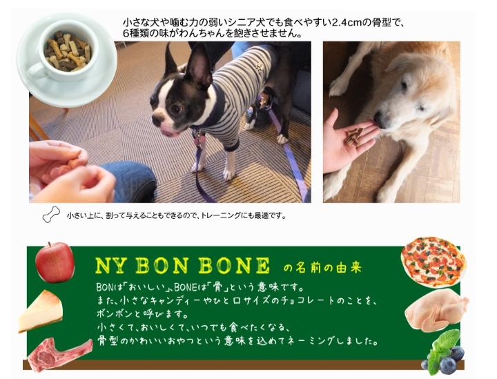 レッドハート NY BON BONE アップルチェダー味 100g (96200303)