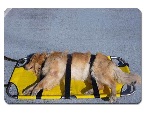 ペット用 担架 アニマル ストレッチャー タンカ 介護 犬 猫 ペット 耐荷重70kgまで