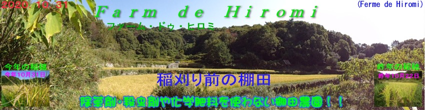 Farm de Hiromi:グルメ、安心・安全棚田米、少量生産です