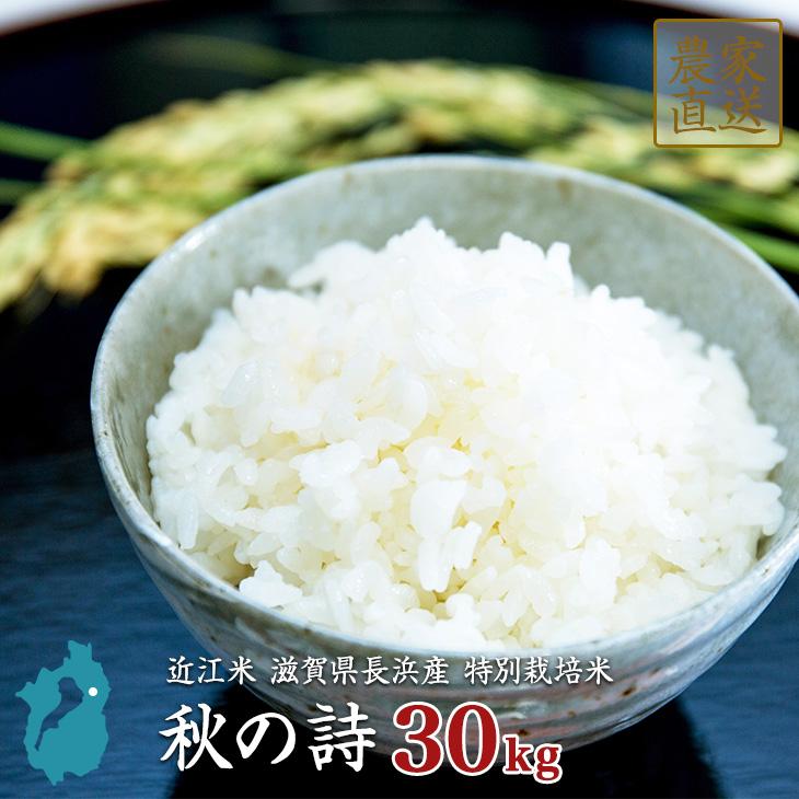 米 秋の詩 30kg 特別栽培米 令和元年 滋賀県産 近江米 備蓄 買いだめ 【送料無料】