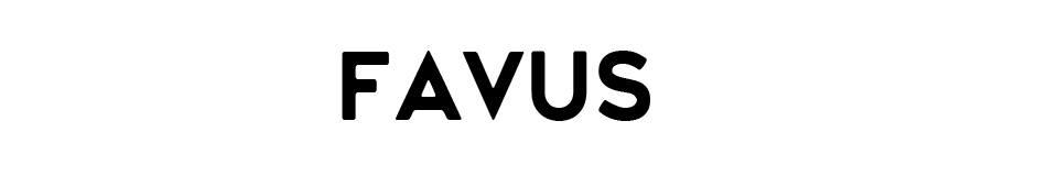 FAVUS:ピストバイク&SUP取り扱っています