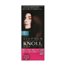売買 N.Y.の スティーブン ノル 定価の67%OFF サロン カラーリスト監修の色設計 コーセー KNOLL 液状ヘアカラー スティーブンノル カラークチュール 5M
