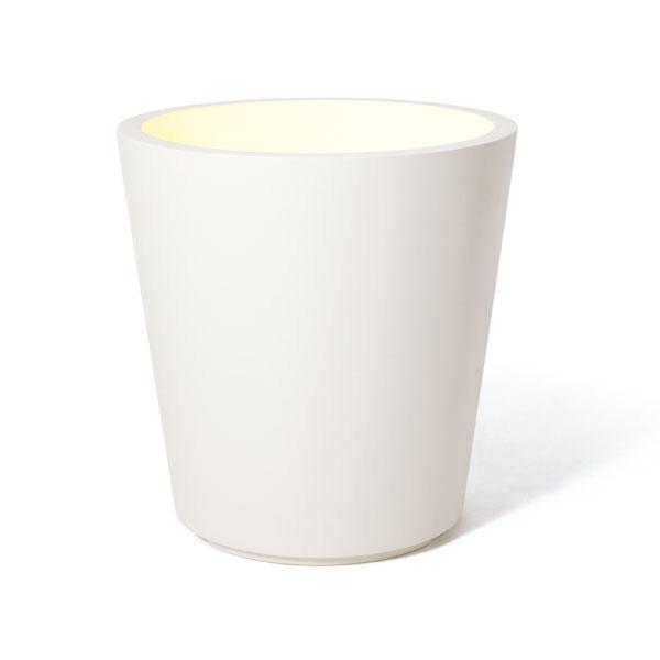 PIANTA×STANZA(ピアンタ・スタンツァ)フォレスタリウム・Lサイズ ホワイト (鉢のみ)