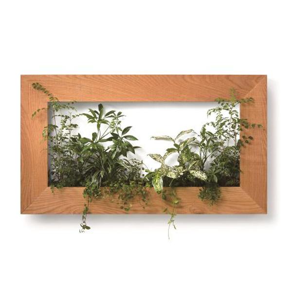 PIANTA×STANZA(ピアンタ・スタンツァ)マイギャラリー・Lサイズ900×500mmクリア(植物セット:ベーシック)