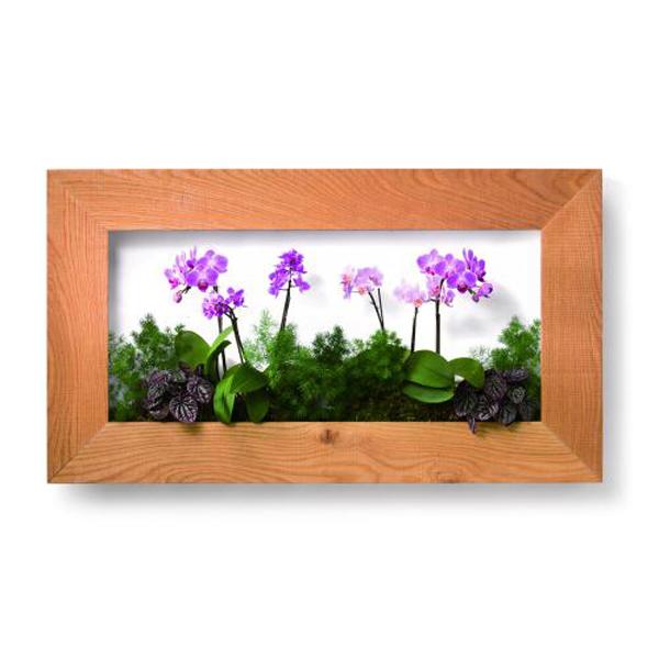 PIANTA×STANZA(ピアンタ・スタンツァ)マイギャラリー・Lサイズ900×500mmクリア(植物セット:フラワー)
