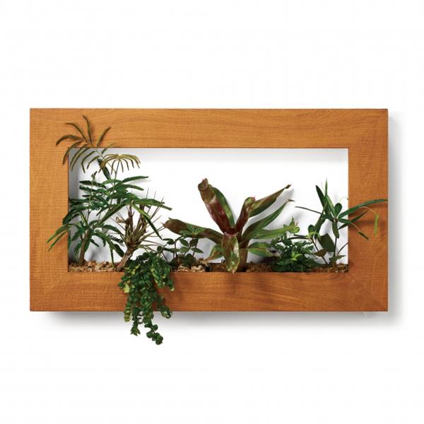PIANTA×STANZA(ピアンタ・スタンツァ)マイギャラリー・Lサイズ900×500mmクリア(植物セット:プレミアム)