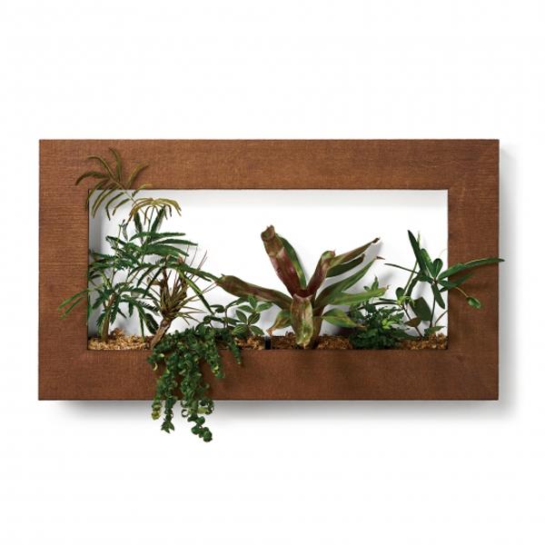 PIANTA×STANZA(ピアンタ・スタンツァ)マイギャラリー・Lサイズ900×500mmチーク(植物セット:プレミアム)