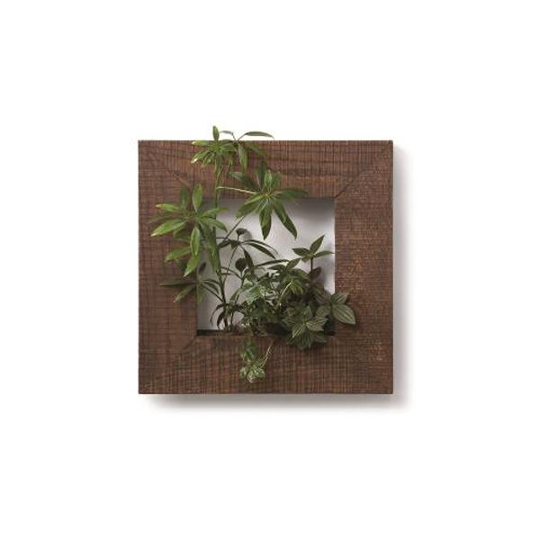 PIANTA×STANZA(ピアンタ・スタンツァ)マイギャラリー・Sサイズ300×300mmチーク(植物セット:ベーシック)