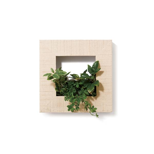 PIANTA×STANZA(ピアンタ・スタンツァ)マイギャラリー・Sサイズ300×300mmホワイトウッド(フェイクグリーン/人工植物)